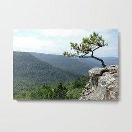 Clifftop Pine Metal Print