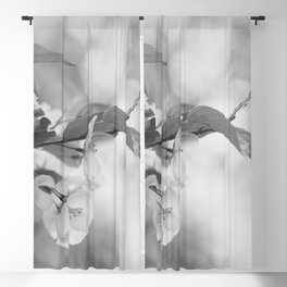 Full Bloom - Black and White Flower Photo Blackout Curtain