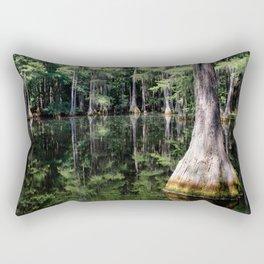 Florida Beauty 4 Rectangular Pillow