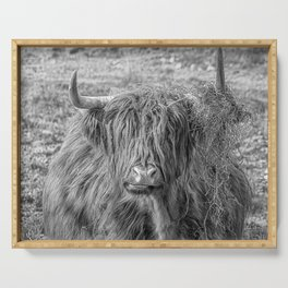 Black and white big Scottish Highland cow Serving Tray