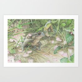 Toad with Cherry Blossom Petals Art Print