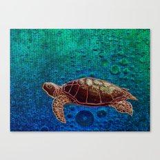 Turtle Patience Canvas Print