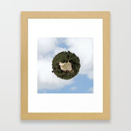 """Worlds in Jerusalem"" - Pine Forest Framed Art Print"