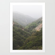 Mist in the San Bernardino Mountains Art Print