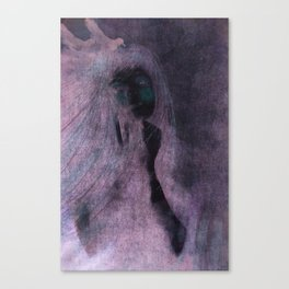 The Girl With Ravens In Her Hair Canvas Print