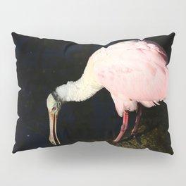 Roseate Spoonbill Pose Pillow Sham