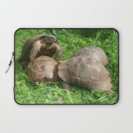 Bullied into Submission - Mating Tortoises Laptop Sleeve