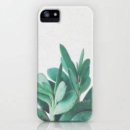 Crassula iPhone Case