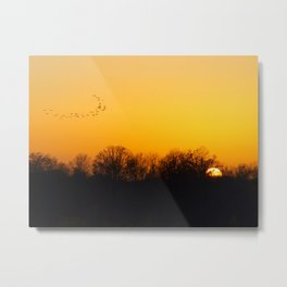 Sunset and cranes natural landscape from France Metal Print