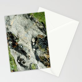 The Seashore Collective Stationery Cards