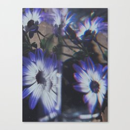 Stunner Canvas Print