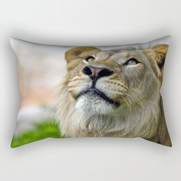 African Lion Rectangular Pillow