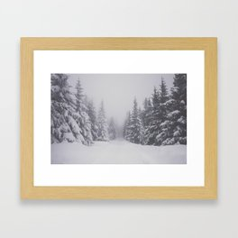 Winter walk - Landscape and Nature Photography Framed Art Print