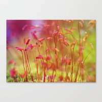 moss Canvas Prints featuring Moss by LoRo  Art & Pictures