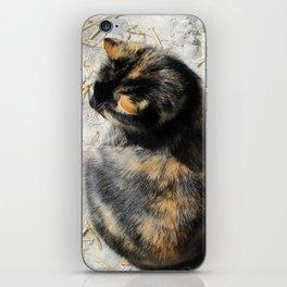 Sand Kitty iPhone Skin