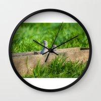pigeon Wall Clocks featuring pigeon by Marcel Derweduwen