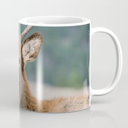 ELK IN ROCKY MOUNTAIN NATIONAL PARK - ELK HERDS GRAZING THE LAND BULL ELKS FIGHTING AND PLAYING  Coffee Mug