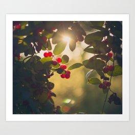 Sun Ray Art Print