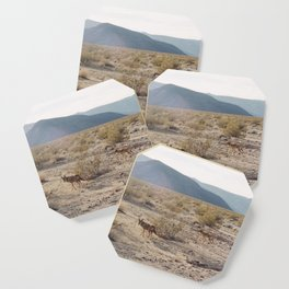 Panamint Valley Coyotes Coaster