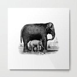 Motherly Love Metal Print