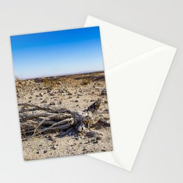 Uprooted Ocotillo Plant in the Middle of Dust and Rocks in the Anza Borrego Desert, California Stationery Cards