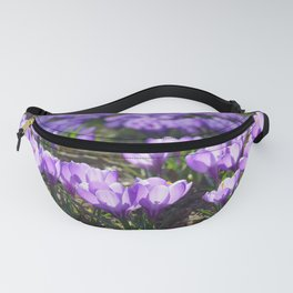 Purple Crocuses Fanny Pack