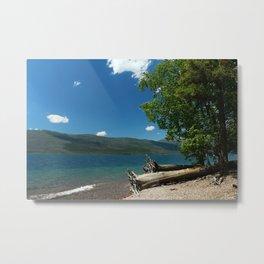 Serene McDonald Lake Metal Print