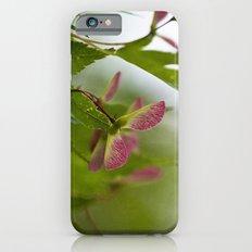 Maple Seeds iPhone 6s Slim Case