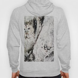 Watercolor Gray Owl Hoody