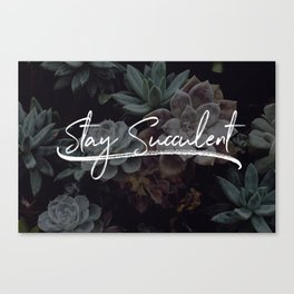 Stay Succulent   V1 Canvas Print