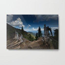 Mt Ellinor Metal Print