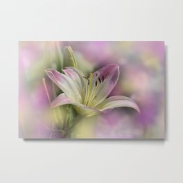 the beauty of a summerday -25 - Metal Print