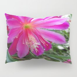 "BLOOMING FUCHSIA PINK "" ORCHID CACTUS"" FLOWER Pillow Sham"