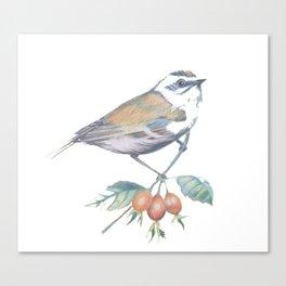 Little Snowbird #bird Canvas Print