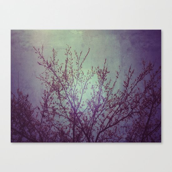 lilac in the air Canvas Print