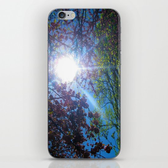 Light up my Life iPhone & iPod Skin