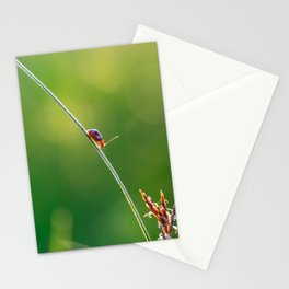 Little red bug perching on grass Stationery Cards