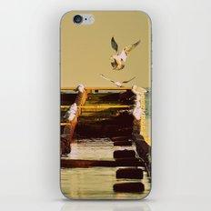 seagulls# iPhone & iPod Skin