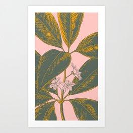 Modern Botanical Banana Leaf Art Print