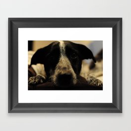 Worrywart Framed Art Print