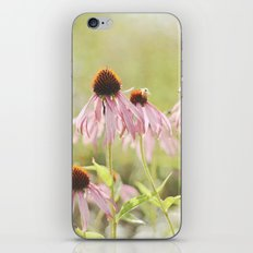 I Thought of You with Love Today iPhone & iPod Skin