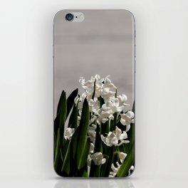 Hyacinth background iPhone Skin