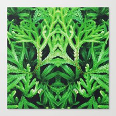 50 Shades of Green (4) Canvas Print