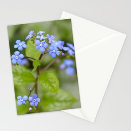Alittle Blue Stationery Cards