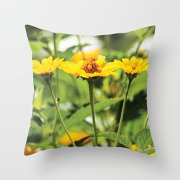 Yellow daisies on dark background PF03 Throw Pillow