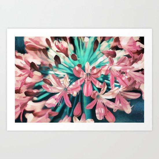 Sunny Agapanthus Flower in Pink & Teal Art Print