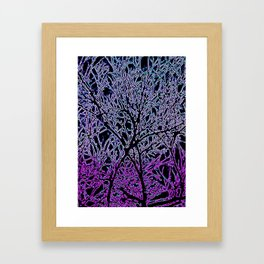 Tangled Tree Branches in Purple and Pink Framed Art Print