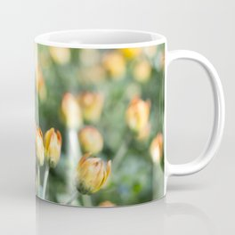 Yellow Flowers at Fall Domes Show Coffee Mug