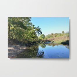 Where Canoes and Raccoons Go Series, No. 28 Metal Print