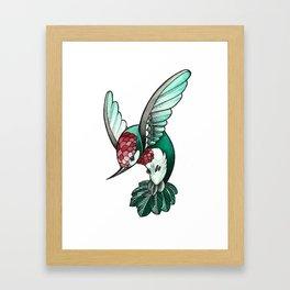 Jewelled Hummingbird Framed Art Print